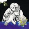 Songs: Ohia – The Magnolia Electric Co.