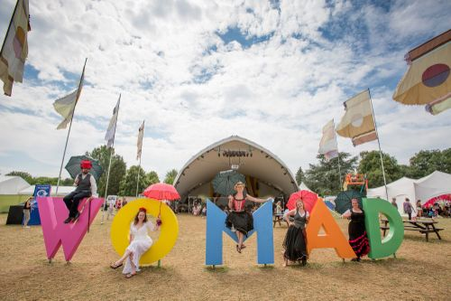 20140803 Womad pic general2