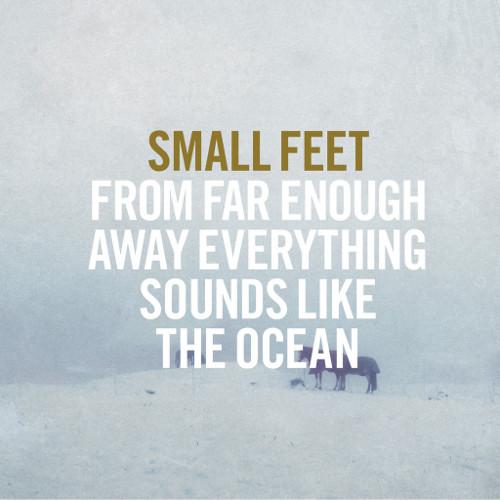SmallFeet_FromFarEnoughAway