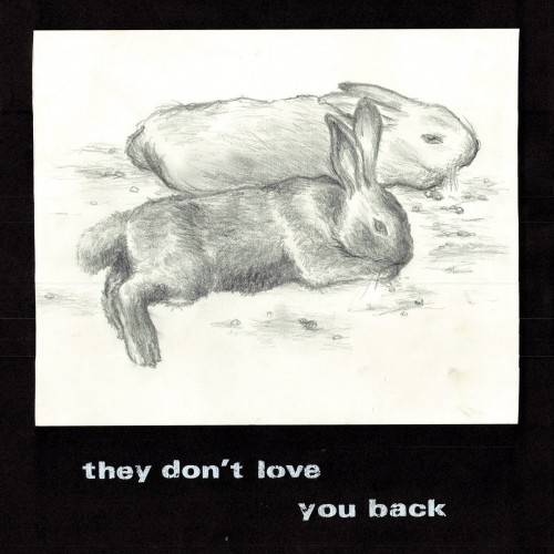 Rotifer - they don't love you back